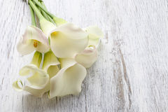 Bouquet of white calla flowers (Zantedeschia) on white wooden ta. Ble, copy space Royalty Free Stock Photos