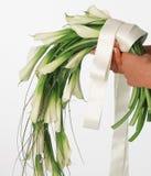 Bouquet of white callas. On white background stock photos