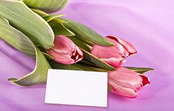 Bouquet and white card Royalty Free Stock Photo