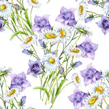 Bouquet white chamomiles with blue bell flowers Royalty Free Stock Images