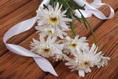 A bouquet of white chrysanthemums with ribbon Stock Photography