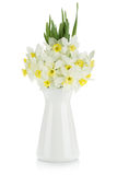 Bouquet of white daffodils Stock Photos