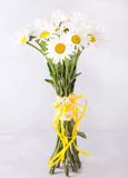 Bouquet of white daisies on a light gray background. Still life with colorful flowers. Fresh daisies Place for text. Flower concep Stock Photo