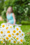 Bouquet of white daisies meadow lies on green grass Royalty Free Stock Photo