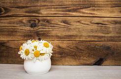 Bouquet of white daisies on wooden background stock images
