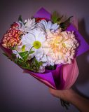 Bouquet with white Daisy flowers close at hand on a dark purple background. Present for woman stock photography