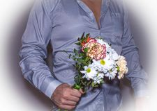 Bouquet with white Daisy flowers in the man`s hand in shirt on white background. Women`s day concept stock images