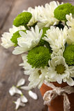 Bouquet of white and green chrysanthemums Stock Photography