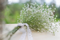 Bouquet of white gypsophila flowers Royalty Free Stock Images