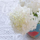 Bouquet of white hydrangea flowers on a table. Stock Image