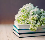 Bouquet of a white lilac on the books Stock Photo