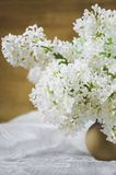 A bouquet of white lilac in a clay pot on a wooden background. Close-up, soft focus royalty free stock images