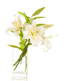 Bouquet of white lilies Stock Photography