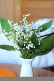 Bouquet of white lilies Royalty Free Stock Photo