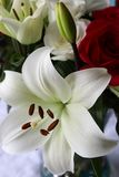 A bouquet with a white lilly royalty free stock photos