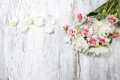 Bouquet of white peonies and pink carnations stock photos