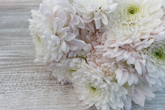 Bouquet of white and pink chrysanthemums close up Royalty Free Stock Images