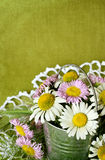Bouquet of white and pink daisies in a metal bucket Stock Photos