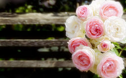 Bouquet of white and pink rose blooms Stock Photo