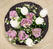 Bouquet of white and purple tulips Stock Image