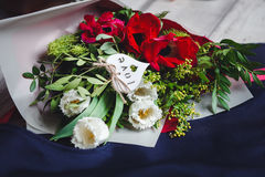 Bouquet of white and red tulips on a blue textile. Bouquet of white and red tulips lies on a blue textile Stock Image