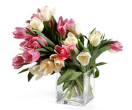 Bouquet of white and red tulips Royalty Free Stock Images
