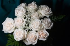Bouquet of white roses. (horisontal Royalty Free Stock Photo