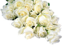Bouquet of white roses. Royalty Free Stock Images