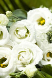 Bouquet of white roses Stock Photos