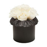 Bouquet of white roses in the black box isolated on white background Royalty Free Stock Photos