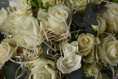 Bouquet with white roses and decorative straw. For printing in a brochure or site design Stock Photos