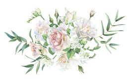 Bouquet of white roses and freesia royalty free stock photo