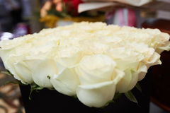 A bouquet of white roses. On a table in a beautiful package Stock Image