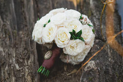 A bouquet of white roses on a tree Stock Image