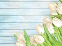 Bouquet of white tulips. EPS 10 Royalty Free Stock Photos