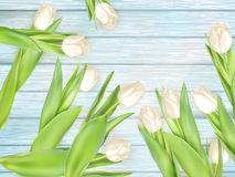 Bouquet of white tulips. EPS 10 Stock Images