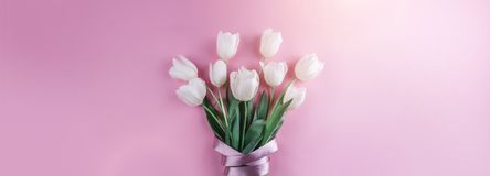 Bouquet of white tulips flowers on pink background. Card for Mothers day, 8 March, Happy Easter. Waiting for spring