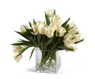 Bouquet of white tulips Stock Photo