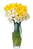 Bouquet from white and yellow narcissus in vase Stock Photos