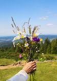 Bouquet of wild flower in woman's hand on mountains background Royalty Free Stock Images