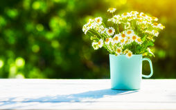 Bouquet of wild flowers in  cup on wooden table on a background Stock Images