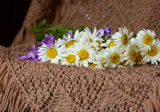 Bouquet of wild flowers Royalty Free Stock Image