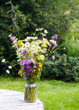 Bouquet. Of wild flowers in a glass jar on a wooden table Royalty Free Stock Photography