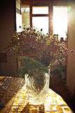 Bouquet of Wild flowers in a glass vase are on the table. the sun`s rays hit the flowers through the window Stock Photos