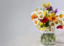 Bouquet of wild flowers on gray Royalty Free Stock Image