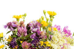 Bouquet of wild flowers isolated royalty free stock images