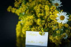 Bouquet of wild flowers for mom Royalty Free Stock Images