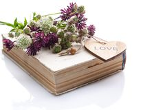 Bouquet of wild flowers on old book on a white background. Isolated vintage composition royalty free stock images