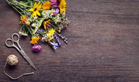 Bouquet of wild flowers scissors vintage board Royalty Free Stock Images