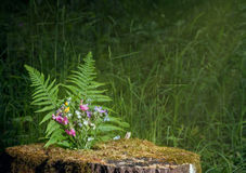 Bouquet of wild flowers on a stump. Wild flowers in the forest for celebration or remembrance stock photo